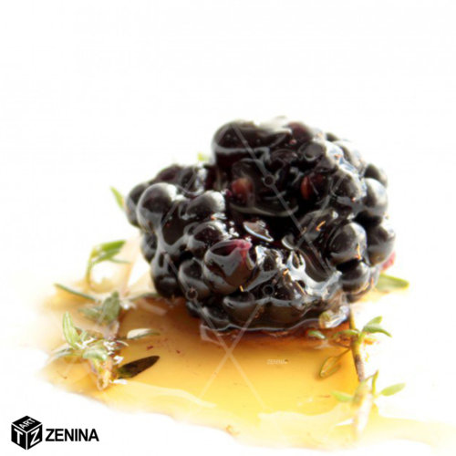 fud-stajl-Zenina-2
